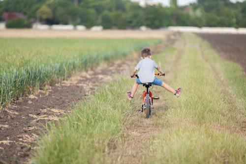 Boy riding a bike in a field