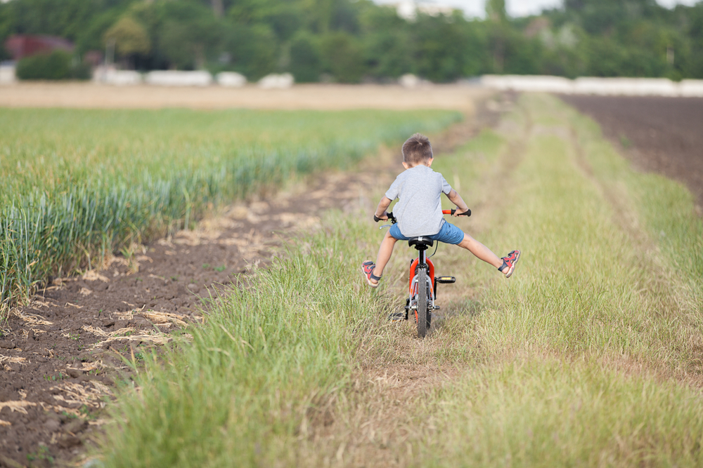 Boy riding a bike in a field